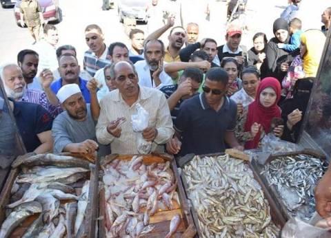 الثروة السمكية بالبحر الأحمر تطرح أسماك بأسعار مخفضة للمواطنين