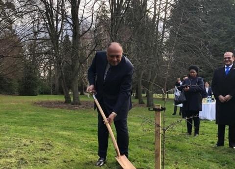 بالصور| سامح شكري يغرس شجرة باسم مصر في حديقة تاريخية بإيرلندا