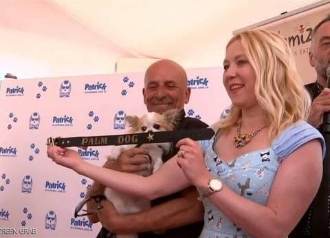 """كلب يفوز بـ""""السعفة"""" في مهرجان كان"""