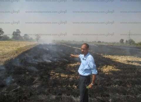 """""""البيئة"""": تلقينا 770 بلاغا من المواطنين عن حرائق للمخلفات"""
