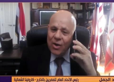 """""""المصريين في الخارج"""": الإقبال على الانتخابات أظهر ثقة الشعب في القيادة"""
