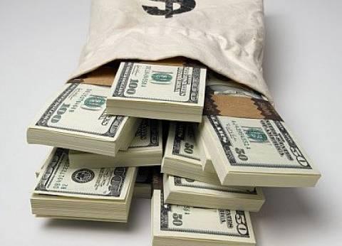 رئيس شعبة الصرافة: شركات الصرافة لعبت دورا في أزمة الدولار بنسبة 50 %