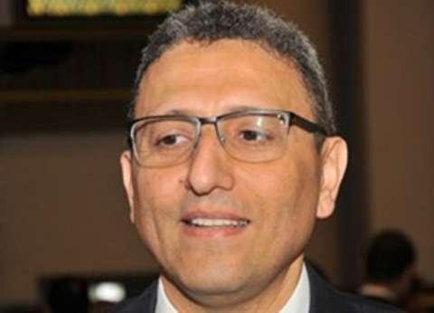 مصر تؤكد أهمية تعزيز دور البرلمانات العربية في حل الأزمات