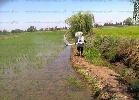 وزير الري: لن نتراجع عن تحصيل مخالفات زراعة الأرز بالمناطق المحظورة
