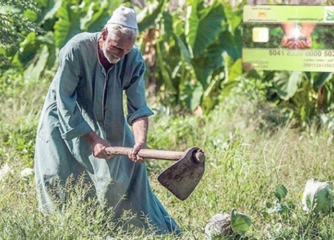 مزارعون يتحدثون عن همومهم ومشاكلهم: «محلاها عيشة الفلاح»