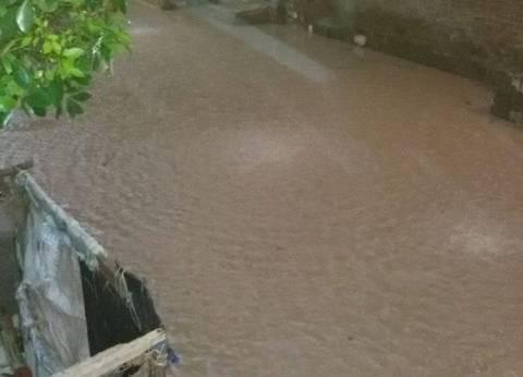 أمطار وعواصف ترابية تضرب الغربية وتوقف حركة المرور