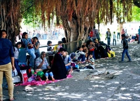 خلال أيام الأضحي.. 14 ألف زائر لحديقة الحيوان في الإسكندرية