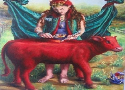 إسرائيليون يزعمون ظهور «البقرة».. حلم وهمى وخدعة صهيونية