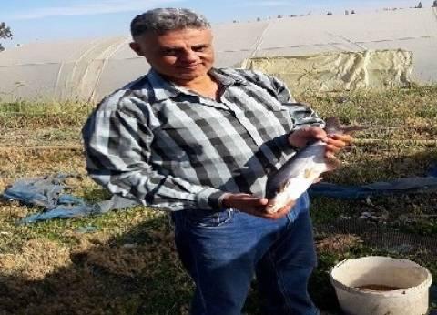 «الباسا» ثورة فى الاستزراع السمكى فى مصر