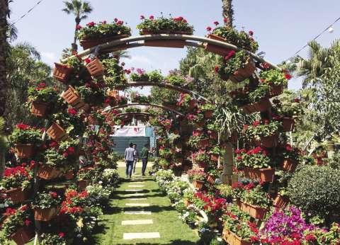معرض زهور الربيع يكشف أسرار العناية بنباتات الزينة وأشجار الفاكهة