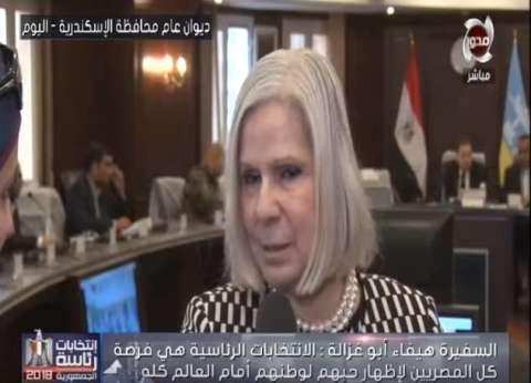 بعثة الجامعة العربية: الانتخابات فرصة لإظهار حب المصريين لوطنهم