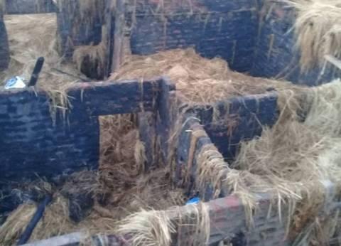 نفوق 14 رأس ماشية جراء حريق نشب في 5 منازل بقنا