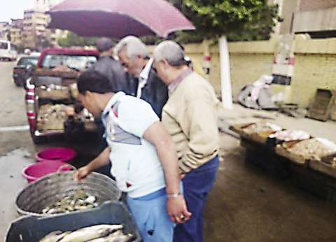 «المغربى» يتضامن مع الدولة ويحطم أسعار السمك: 25٪ تخفيض.. والجشع ما نعرفوش