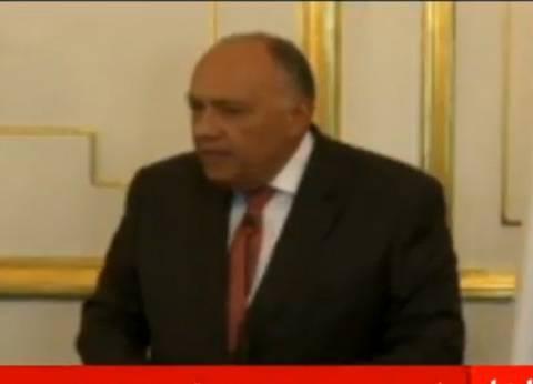 وزير الخارجية: القمة العربية ستتناول مستجدات الأزمة السورية غدا