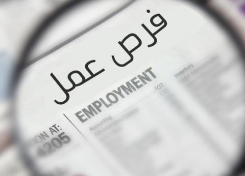 وزارة التضامن الاجتماعي تعلن عن وظائف شاغرة بالإسكندرية