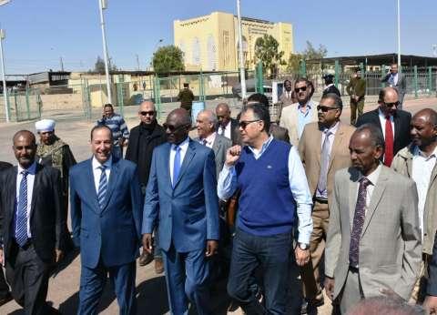 وزير النقل ونظيره السوداني يتفقدان ميناء السد العالي