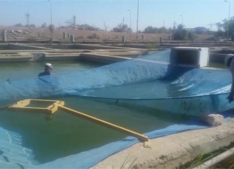 """تعاون بين """"السد العالي"""" و""""الثروة السمكية"""" لزيادة إنتاجية بحيرة ناصر"""