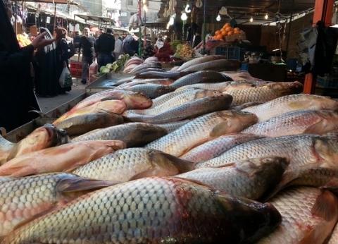 أسعار السمك اليوم الثلاثاء 23-4-2019 في مصر