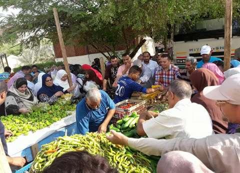 مركز الخارجة يوفر خضروات وفاكهة بأسعار مخفضة للمواطنين