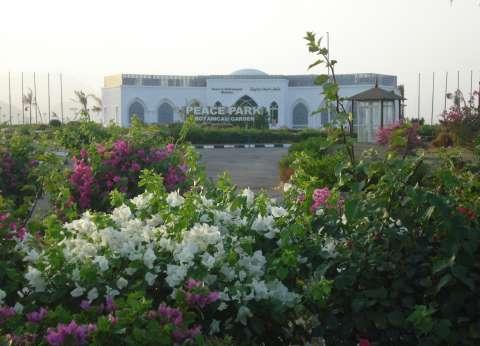 فنانو «الحرف التراثية» يوجهون رسالة تسامح إلى العالم من «متحف السلام»