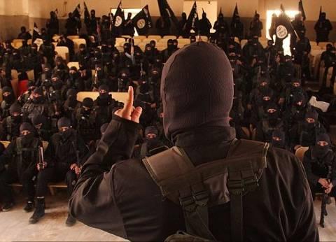 """مذيعة """"الحدث اليوم"""": الجماعات الإرهابية تصل كفر الشيخ"""