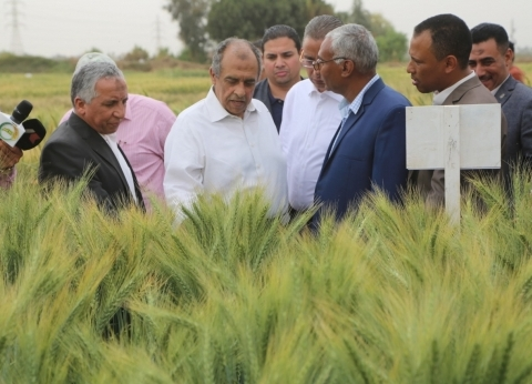 وزير الزراعة يفتتح موسم زراعة القطن في كفر الشيخ