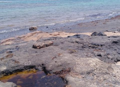 نيابة البحر الأحمر تبدأ التحقيق بحادث تلوث نفطى على شواطئ رأس غارب