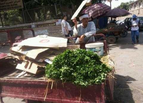 حملة لإزالة إشغالات واحتكار الباعة الجائلين للطريق شرق الإسكندرية