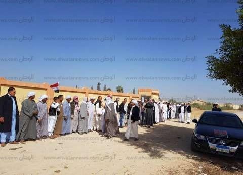 برلماني: تواجد مكثف للناخبين أمام لجان الاقتراع بمحافظة مطروح