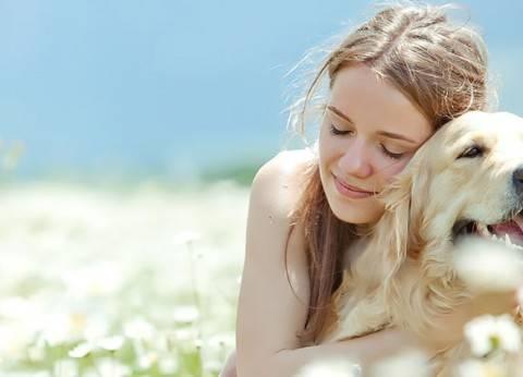«الحيوانات».. المعنى الحقيقى للحب الصامت