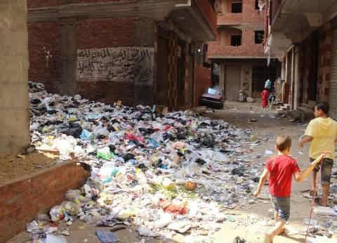 رفع القمامة المتراكمة وتسليك الصرف الصحي بعامرية الإسكندرية