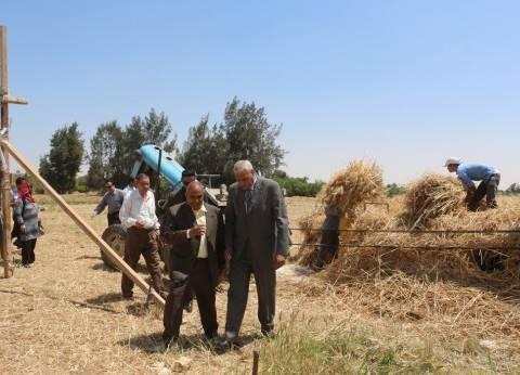 محافظ السويس يشهد بدء موسم حصاد القمح في قرية الرائد