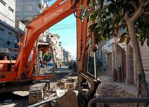 بالصور| حملة لتمهيد طريق الدبدوبة في عزبة البرج لأعمال الرصف