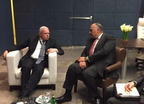 """""""شكري"""": القضية الفلسطينية في مقدمة أولويات السياسة الخارجية المصرية"""