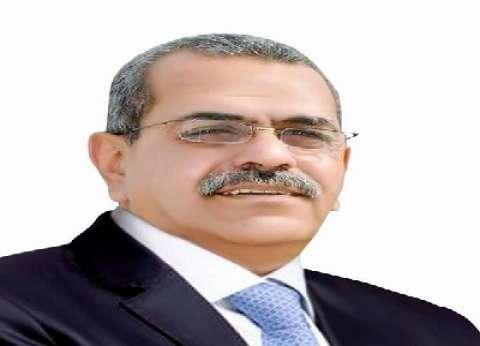 على أبوشوشة يكتب كفر الشيخ تتغير بمشروعاتها وأهلها