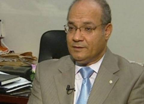 """اللاوندي: هناك من يصطاد في """"الماء العكر"""" لضرب العلاقات المصرية الفرنسية"""