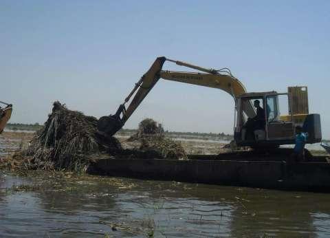 المسطحات المائية بكفر الشيخ تزيل تعديات صيد مخالف على 20 فدانا ببحيرة البرلس