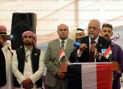 نشاط مكثف لحشد المصريين فى الخارج للمشاركة فى الانتخابات الرئاسية