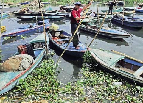 نفوق أسماك بحيرة مريوط.. و«الصيادين»: الصرف الصناعى السبب