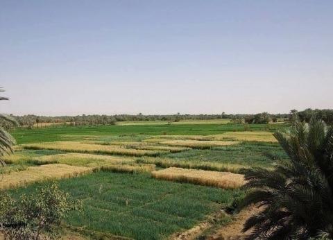 شريف إسماعيل: الانتهاء من 278 ألف طلب تقنين أوضاع أراضي الدولة
