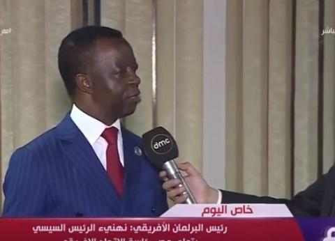 """""""ندودانج"""": إفريقيا مؤمنة بقدرات السيسي.. ونحتاج الكثير من الإصلاحات"""
