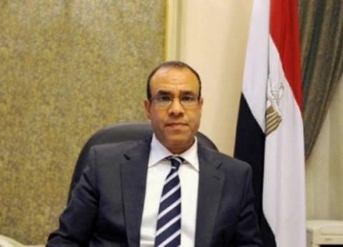 سفير مصر لدى ألمانيا: الاستفتاء يسير بشكل جيد وسط أجواء إيجابية
