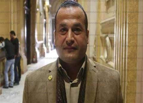 النائب محمد عمارة من أمام السفارة المصرية بباريس: هناك إقبال كثيف