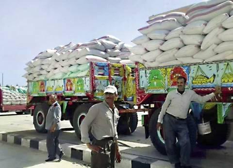 """""""تموين الفيوم"""": توريد 162200 طن من محصول القمح لـ15 موقع استلام"""