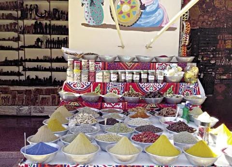 منتدى الشباب ينعش مبيعات أسوان: ندوات الصبح و«شوبنج» بالليل