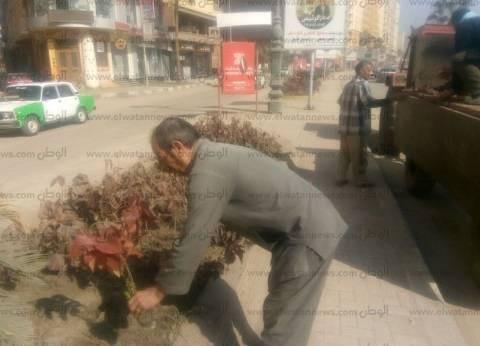 حملات مكبرة للنظافة بمدينة دمنهور في البحيرة
