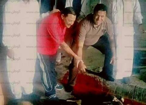 محافظ مطروح يذبح عجلا تبركا لمنتخب مصر ويرسل وفدا لبرج العرب