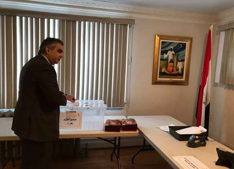 بالأرقام.. خريطة اللجان الفرعية لانتخابات المصريين المقيمين في الخارج