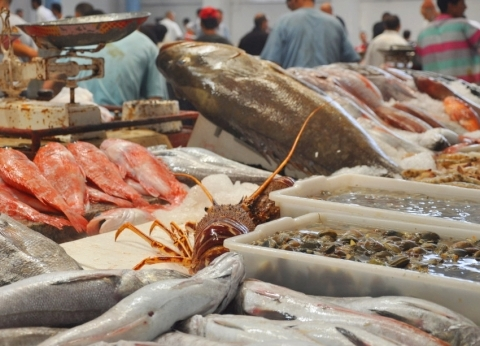 أسعار السمك اليوم الأربعاء 24-4-2019 في مصر