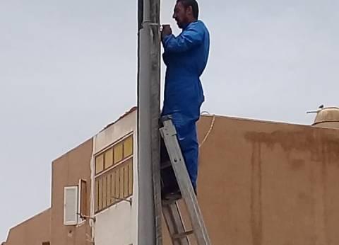 """كهرباء الوادي الجديد تنتهي من إحلال خطوط الكهرباء الهوائية بـ""""الداخلة"""""""